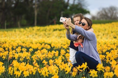 Photos gratuites de bonheur, clairière, content, croissance