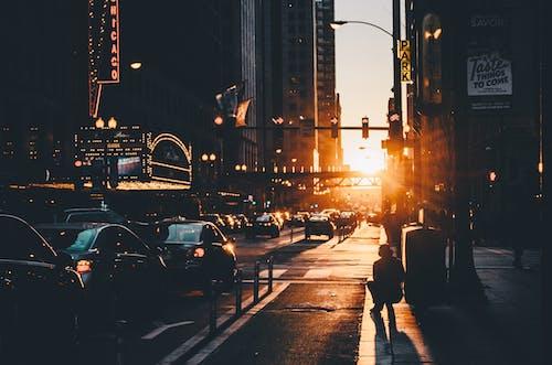 Základová fotografie zdarma na téma architektura, auta, budovy