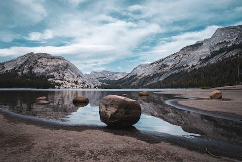 Kostnadsfri bild av äventyr, barrträd, berg, bergen