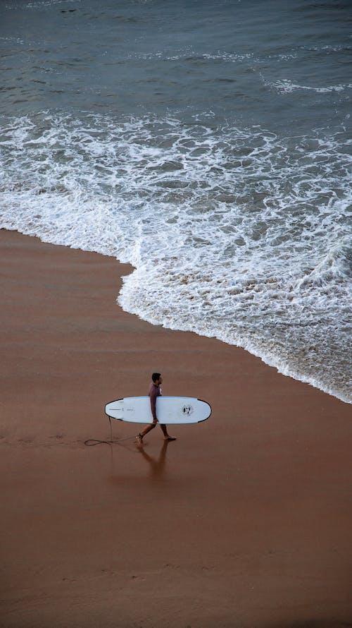 Photos gratuites de action, bord de l'océan, bord de mer