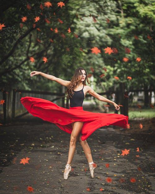 Kostenloses Stock Foto zu aktiv, balance, draußen, erholung