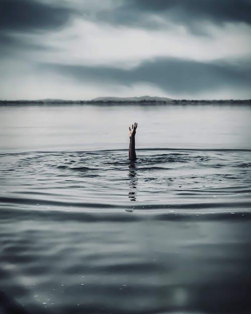 Foto profissional grátis de ação, afogamento, afogando-se, água
