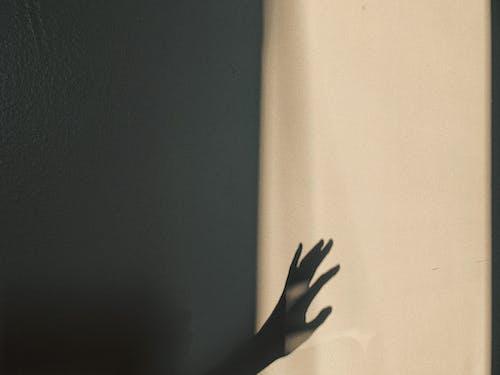 Бесплатное стоковое фото с безмятежный, блестящий, геометрия, движение
