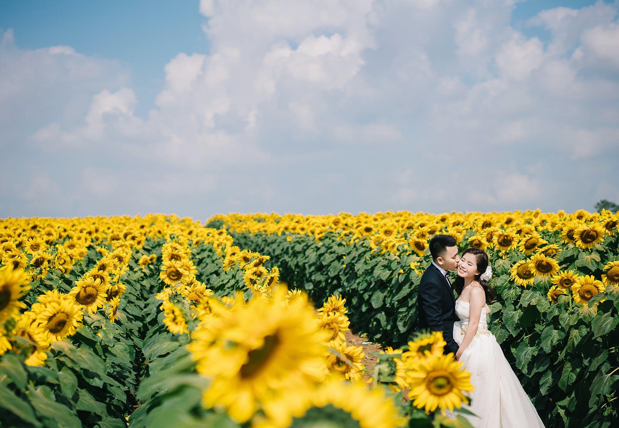 beautiful flowers, blue sky, Bride and Groom