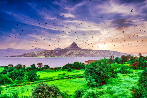 Free stock photo of birds, composite, lake, lonavla