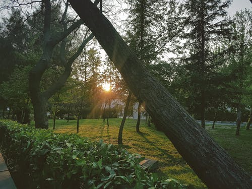 Gratis stockfoto met akşam güneşi, anlık fotoğraf, foto's bewerken, güneş