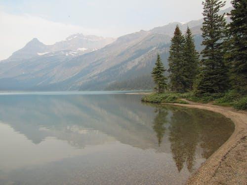 Free stock photo of lake, tranquility
