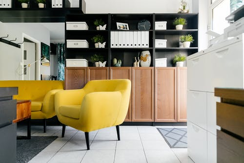 Creative yellow armchairs placed near wooden coffee table in cozy living room with creative shelves decorative houseplants