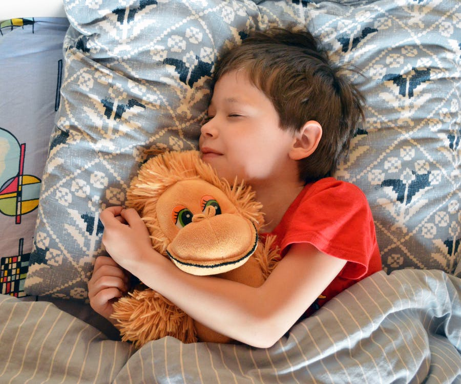 Adorable kid sleeping in bed with toy
