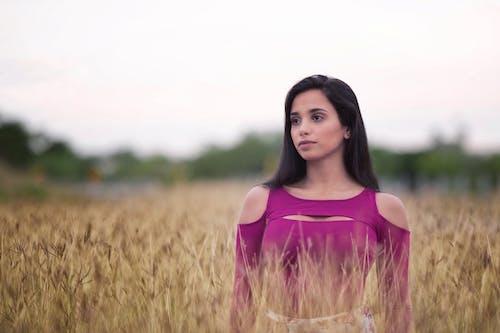 Ảnh lưu trữ miễn phí về cánh đồng, cánh đồng lúa mì, Chân dung, chụp ảnh