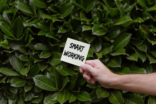 Person Holding a Card with Smart Working Text