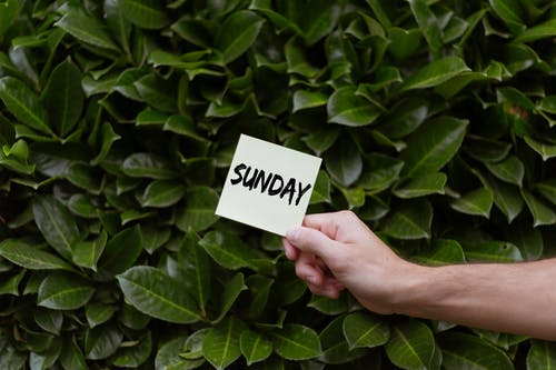 Person Holding a Card with Sunday Text