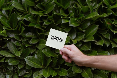 Person Holding a Card with Twitter Text