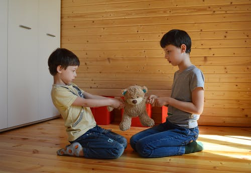 Side view full body fighting brothers in casual wear sitting on floor and pulling teddy bear to sides at home