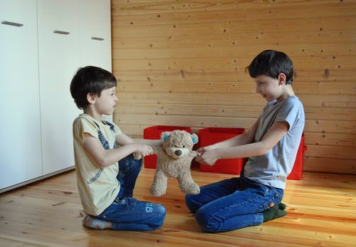 Side view full length irritated fighting brothers sitting on floor and pulling teddy bear to sides