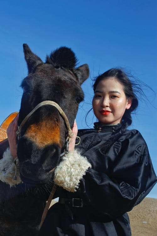 From below young content Asian female in black jacket caressing purebred adorable horse while standing on windy paddock