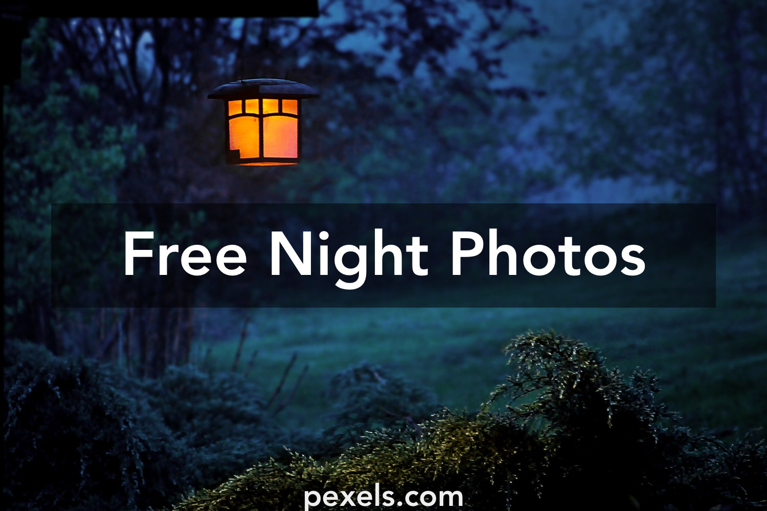 Breathtaking Night Images · Pexels · Free Stock Photos