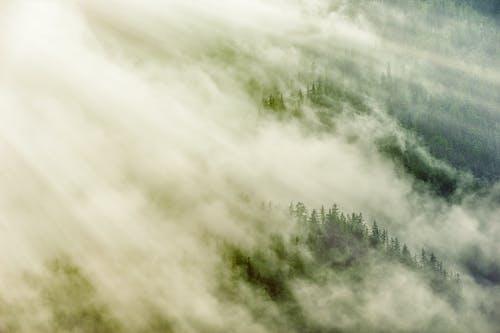 경치, 날씨, 드라마틱한, 물의 무료 스톡 사진