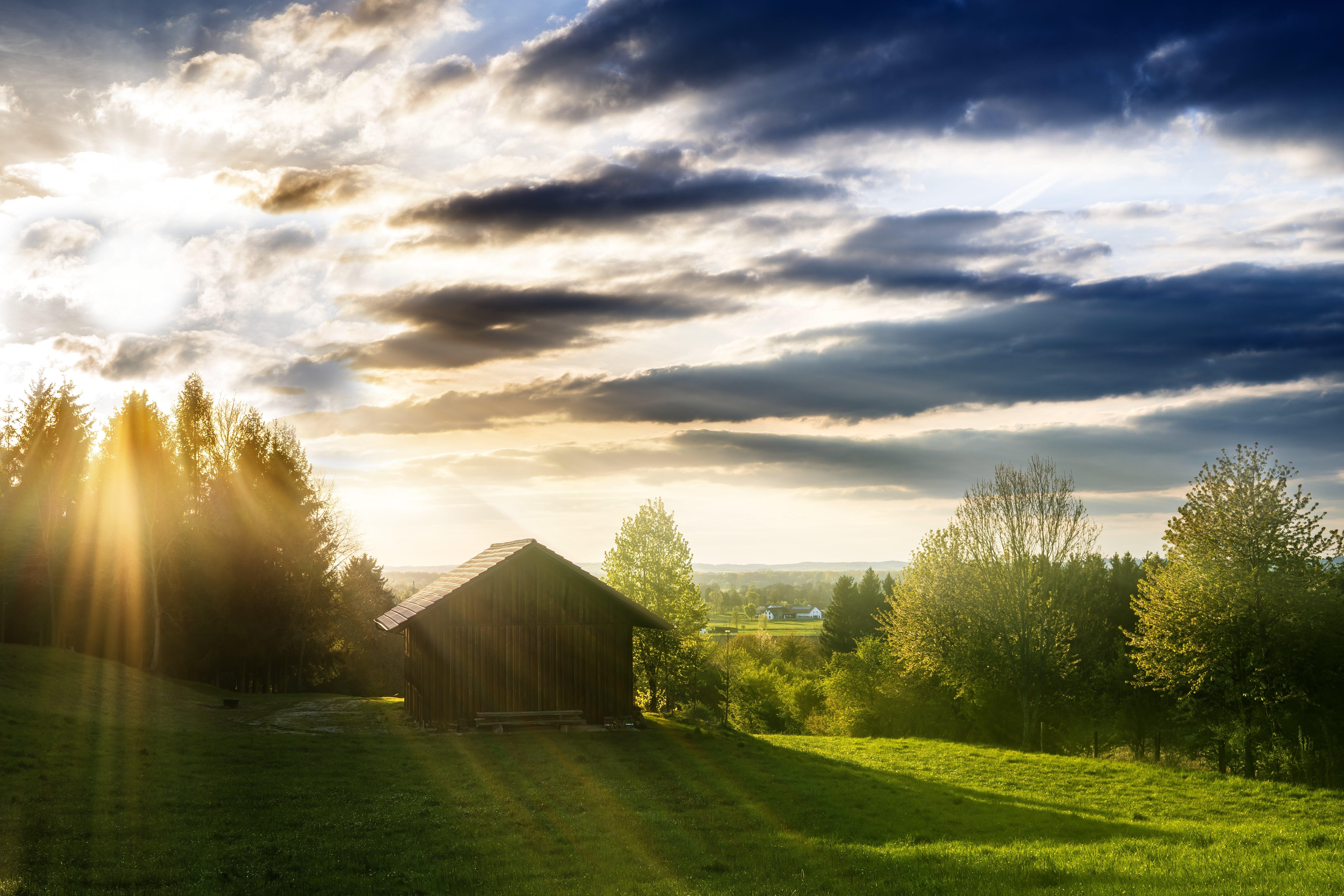 Foto d'estoc gratuïta de a pagès, arbres, capvespre, cel