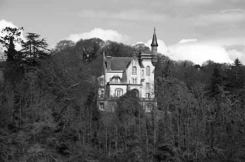 Photos gratuites de arbres, bois, château, domaine