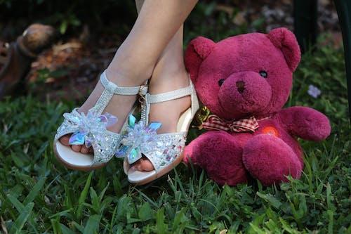 Gratis lagerfoto af bamse, glas glider, par sko