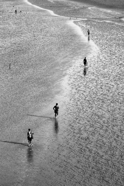 From above of black and white distant anonymous people walking on sandy beach near waving sea on sunny day