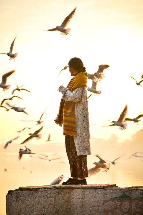 Side view of anonymous female in casual wear and scarf standing on stone border and admiring flock of seagulls during sunset