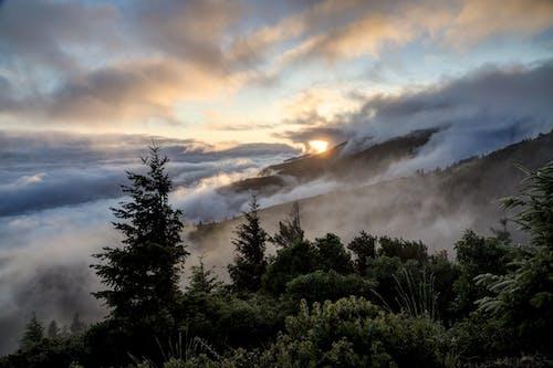 Darmowe zdjęcie z galerii z chmury, drzewa, góra, jasny