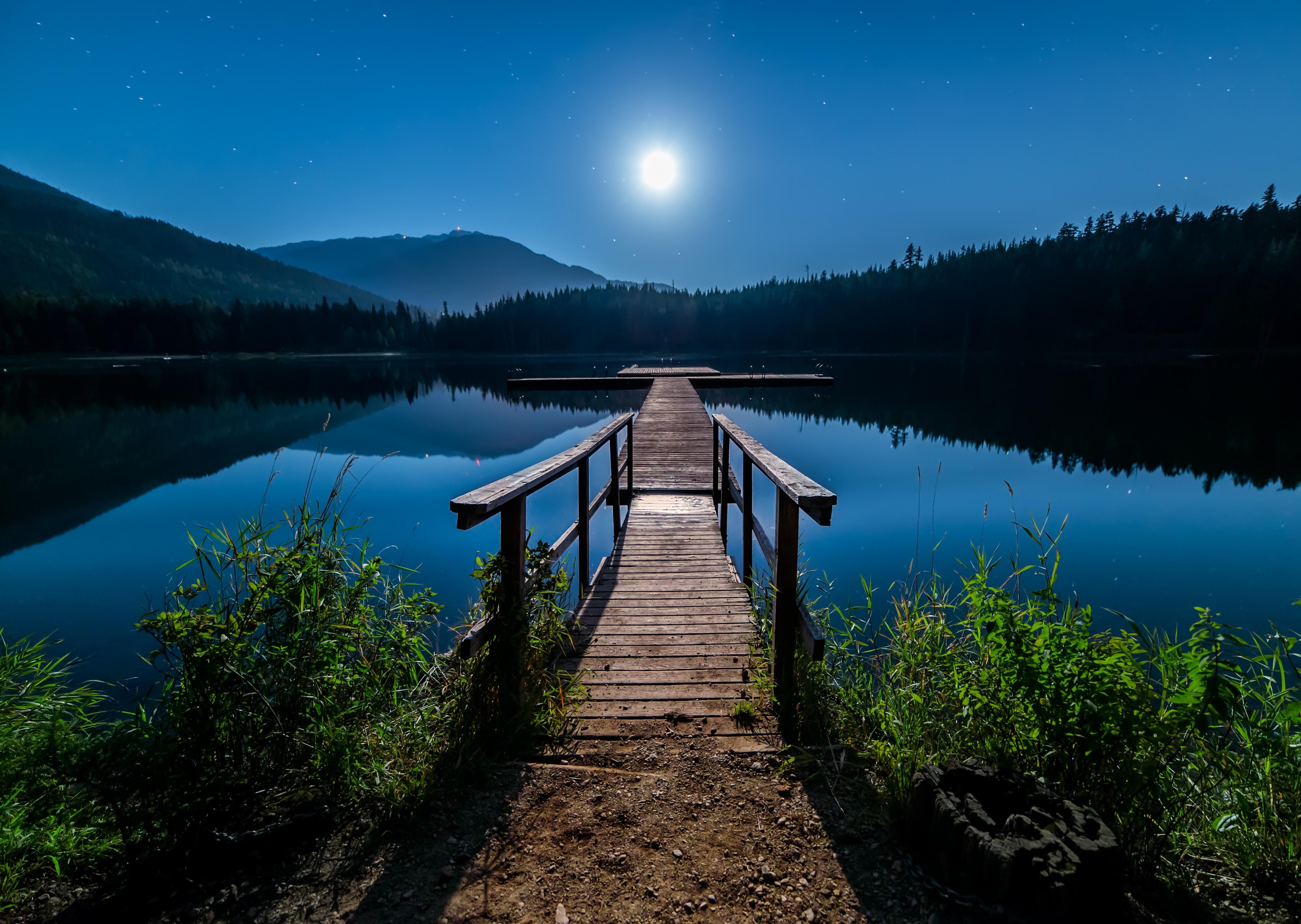 Image of: Green James Wheeler Pexels 1000 Beautiful Natural Photos Pexels Free Stock Photos