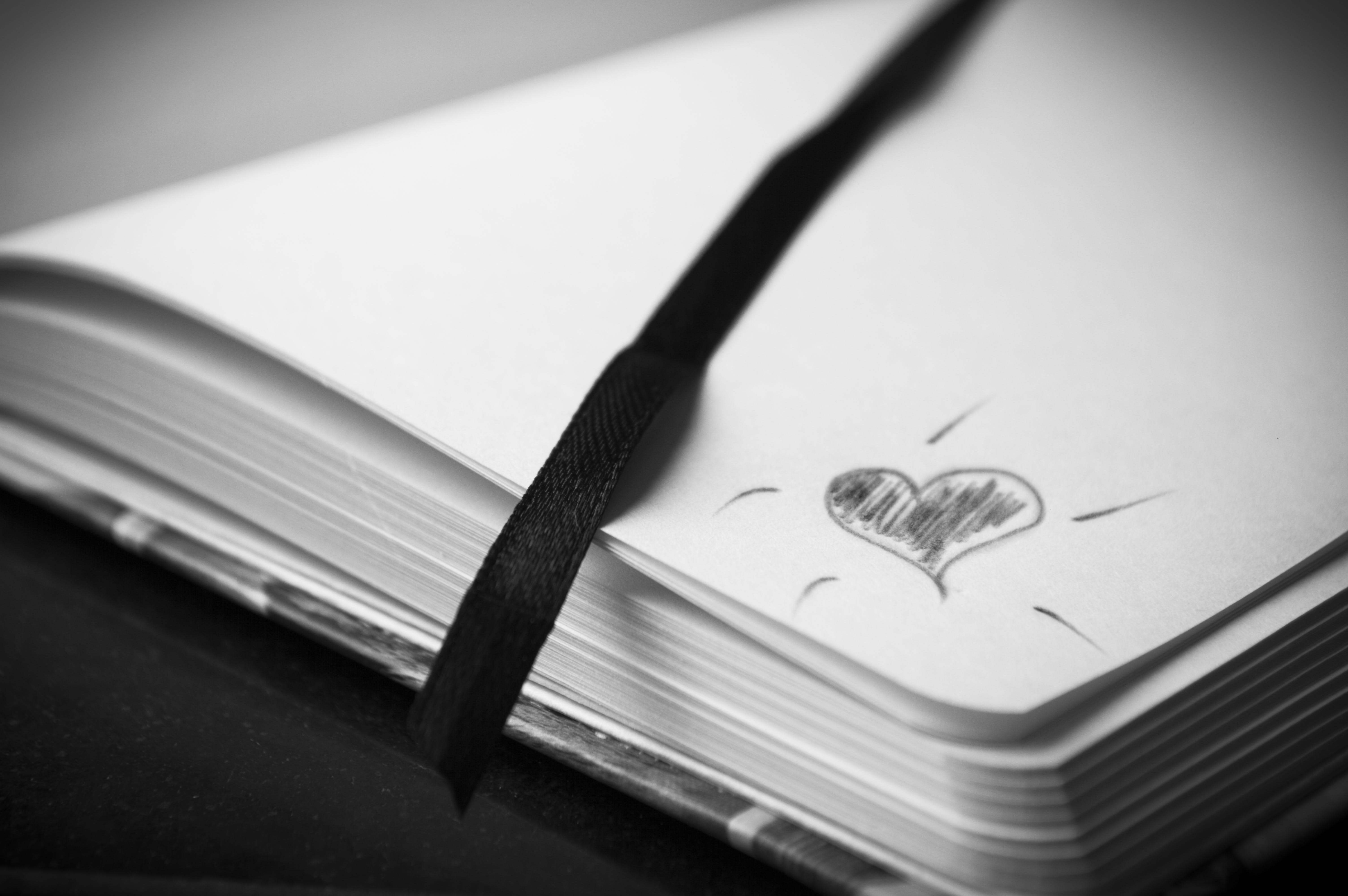 Free stock photo of black-and-white, couple, love, heart