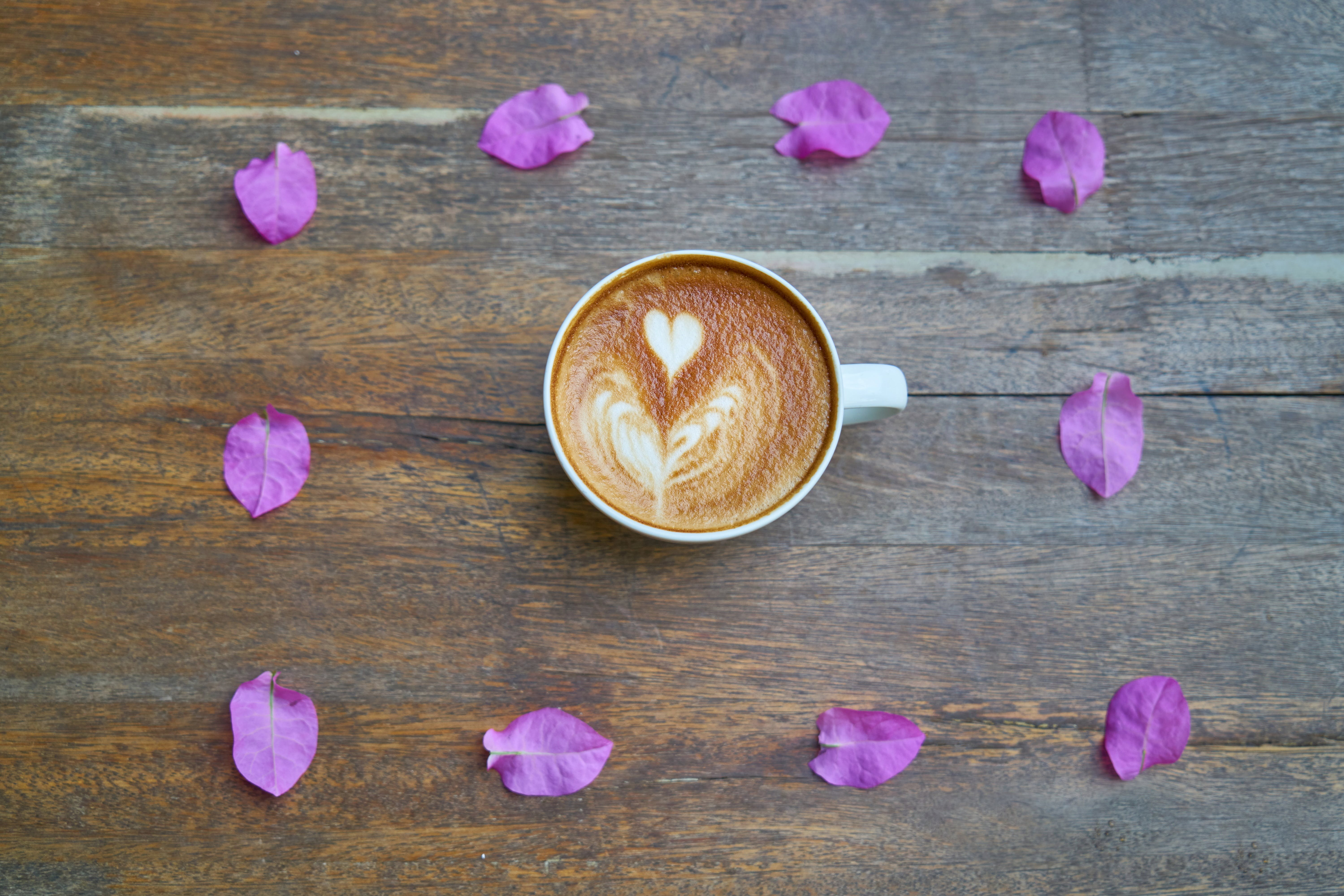 Cup of Cappuccino and Purple Petals
