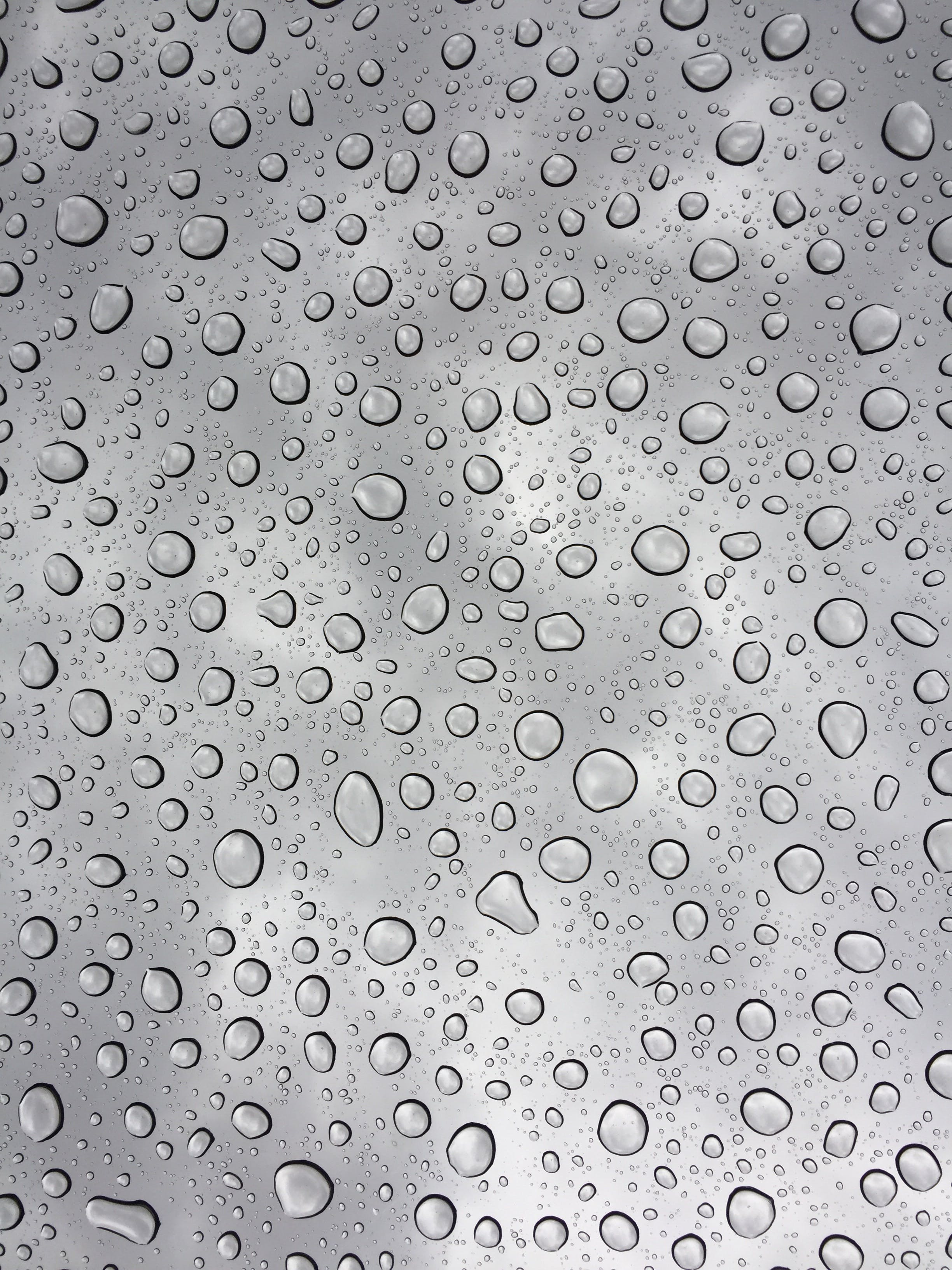 Free stock photo of water, glass, dew, rain