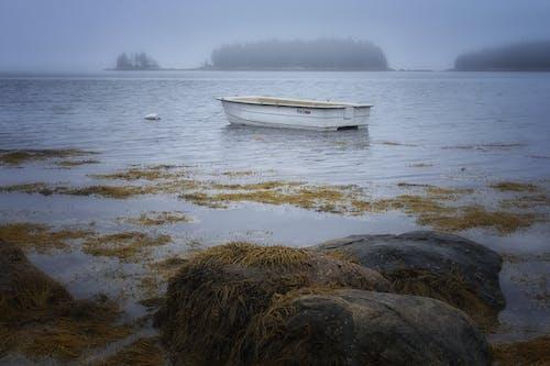 Photos gratuites de aube, aventure, bateau, bord de mer