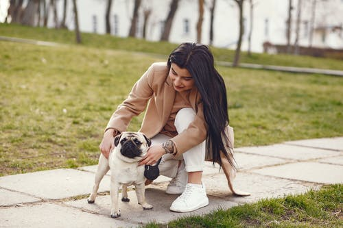 Satisfied woman stroking dog in park