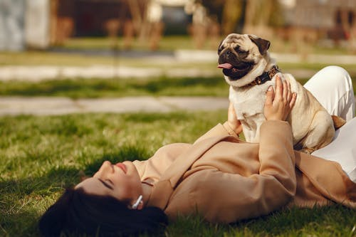 Photo of Woman in Brown Coat Holding Her Dog