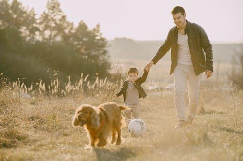 Kostenloses Stock Foto zu bindung, bindungszeit, brauner hund