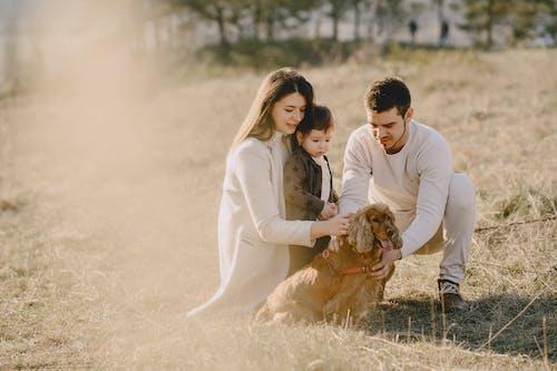 Happy family stroking Cocker Spaniel in countryside