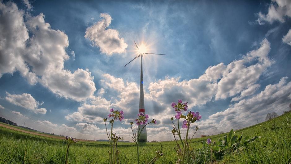 agriculture, alternative, alternative energy