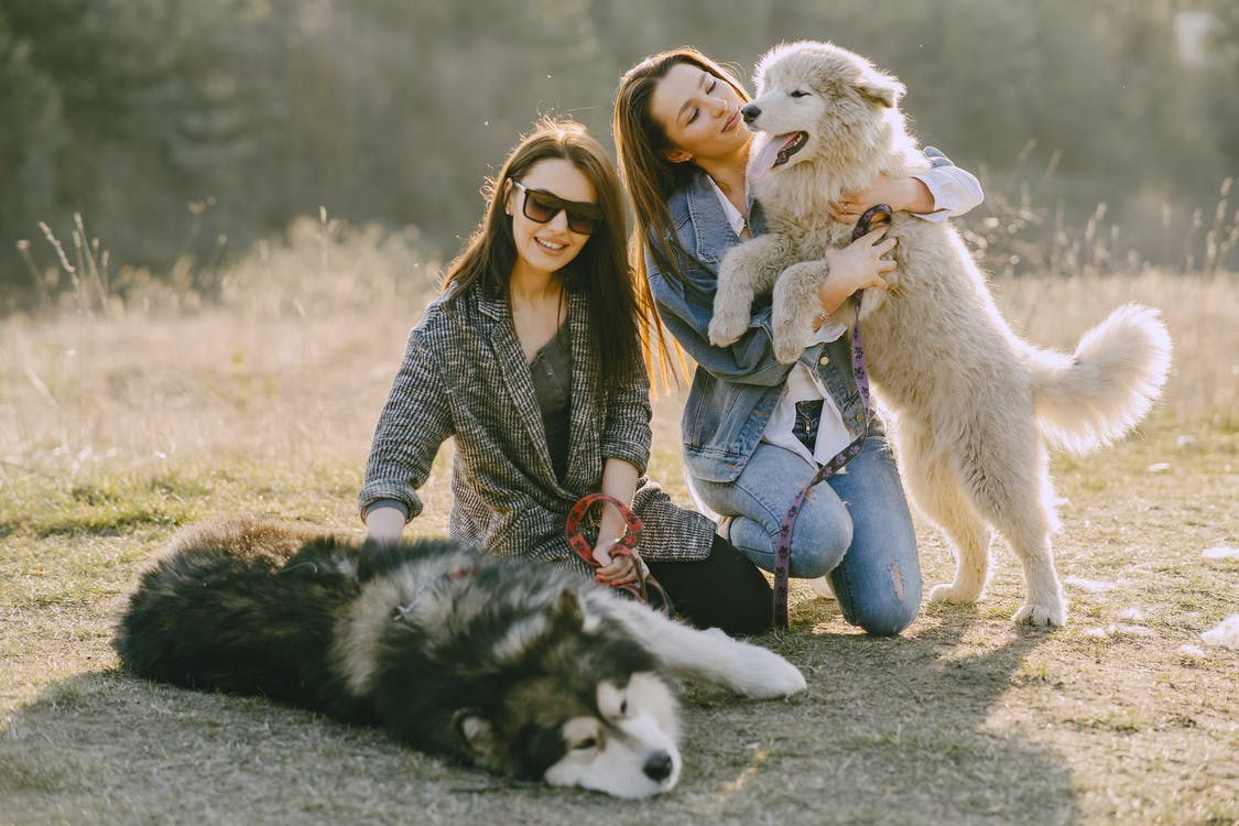 Photo of Women Holding Their Dogs