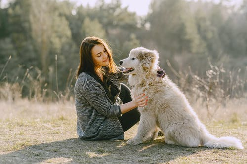 Happy woman caressing fluffy dog on grass in countryside