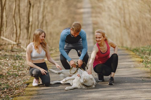 Group of athletes playing on pathway in park with White Shepherd dog on leash while spending time together outdoors during active leisure