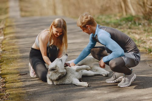Happy young couple in sportswear playing with dog in park in spring