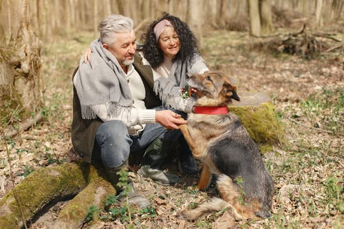 Happy elderly couple strolling in forest with dog