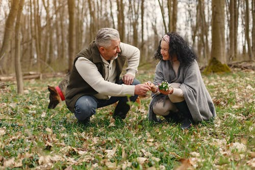 Senior wife wearing wide scarf and headband smiling while sitting on ground in autumnal forest with delicate flowers in hands near elderly gray haired husband in warm clothes while walking with German Shepherd dog and looking at each other