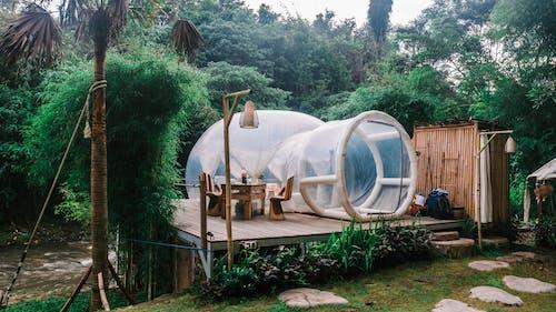 Exterior of cute bubble tent in tropical garden
