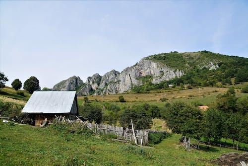 Old rural cottage on green highlands