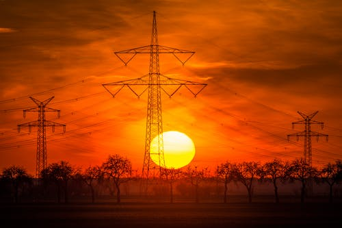 Kostenloses Stock Foto zu bäume, drähte, elektrisch, elektrizität