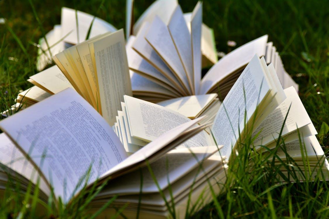 fű, könyvek, könyvoldalak