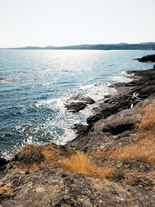 Free stock photo of coast