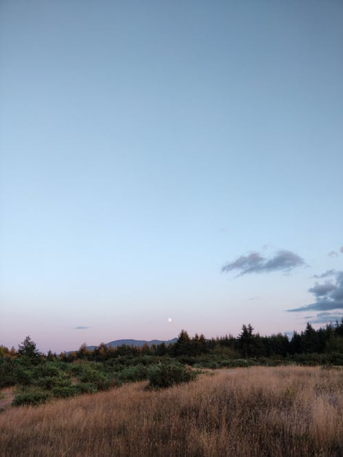 Free stock photo of dawn dusk